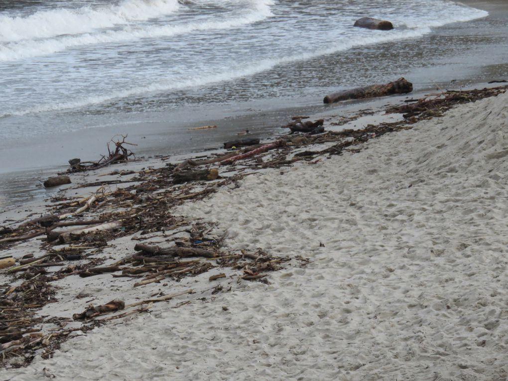 La plage de La Garoupe et son phare dans le lointain