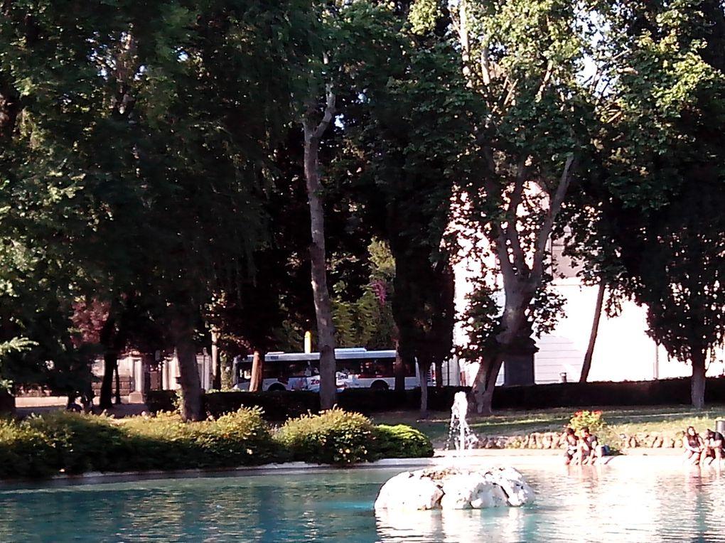 Roma verde-Villa Borghese