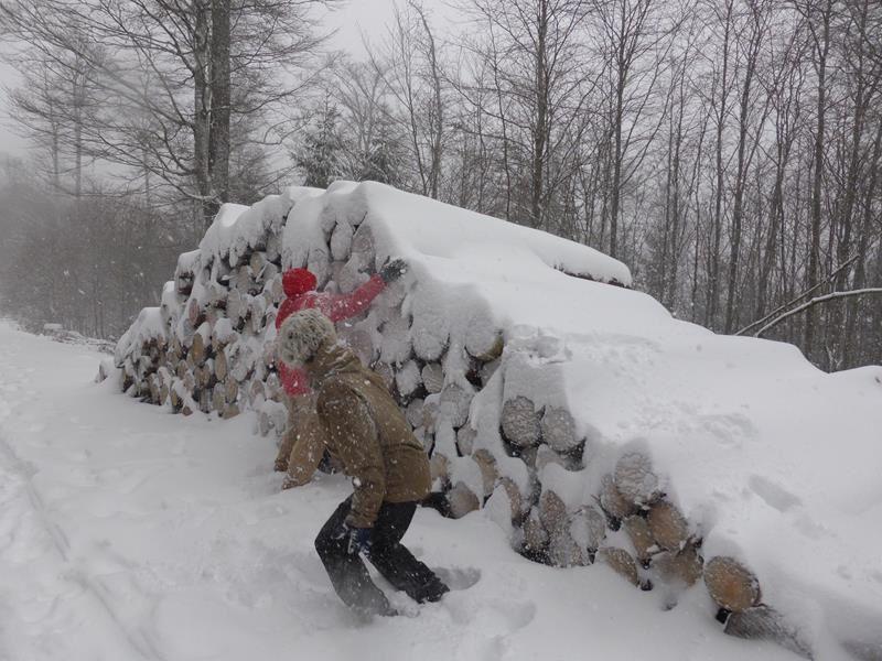 ...une bataille de boules de neige !
