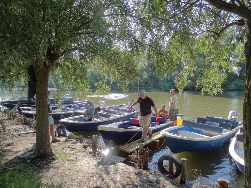 Acte 3.3 (2° partie) Balkans Tour 2013 Roumanie