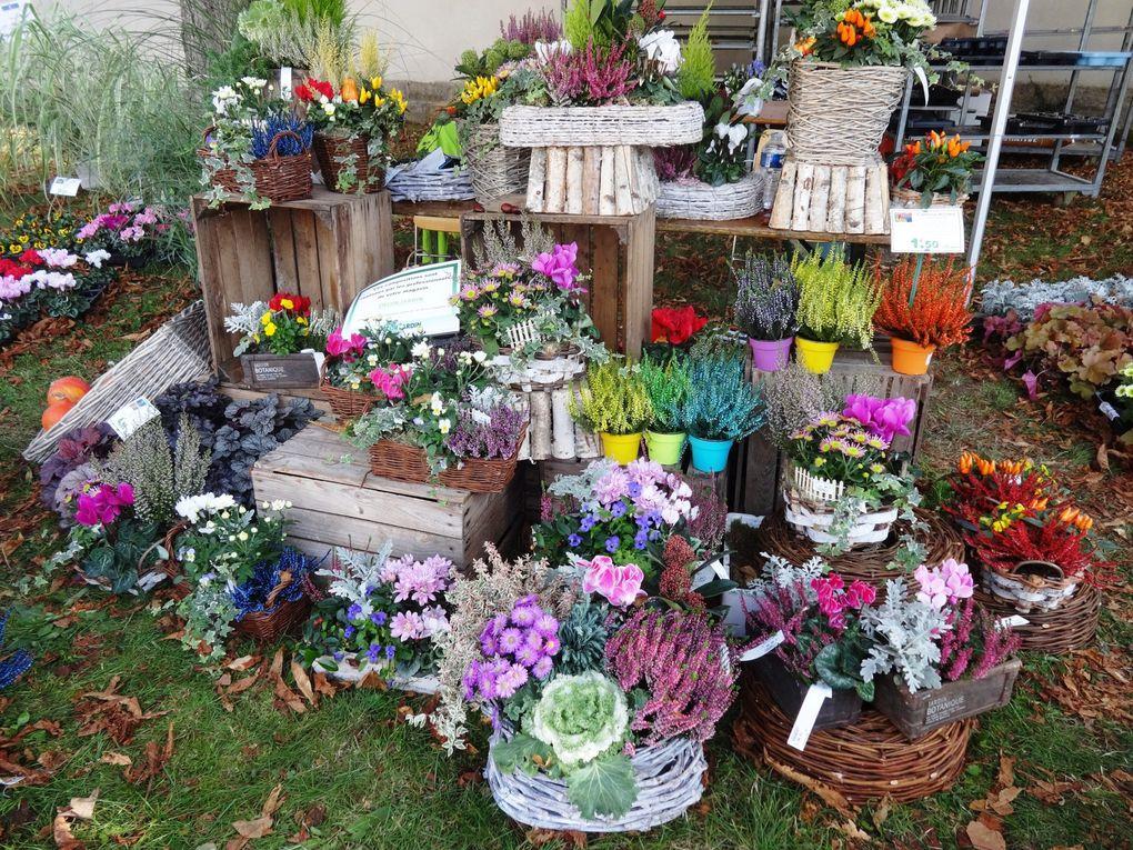 Nancy, &quot&#x3B;Jardin extraordinaire : saveurs d'automne&quot&#x3B;