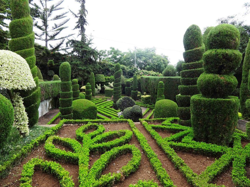 Ile de Madère - 11. Le jardin botanique