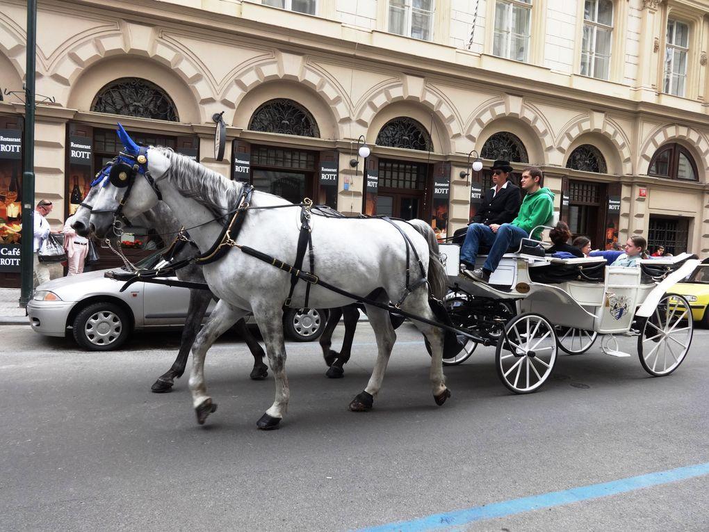 Six jours à Prague - 9. Les moyens de transport