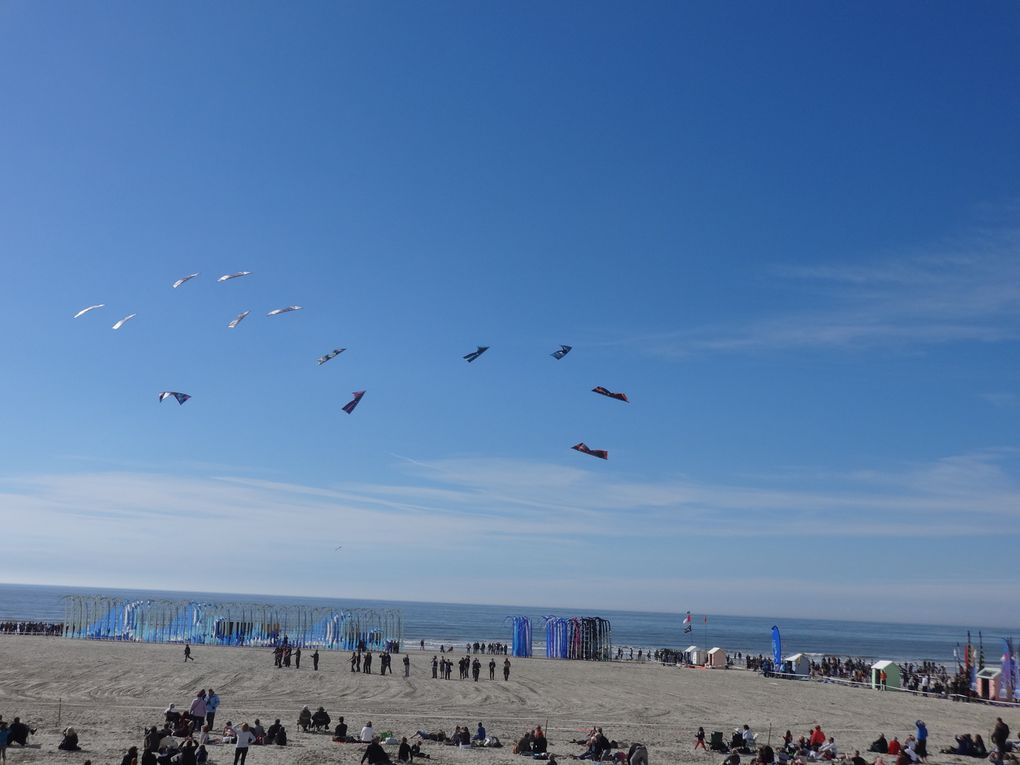 La Baie de Somme et ses environs - 3. Berck-sur-Mer : rencontres internationales du cerf-volant