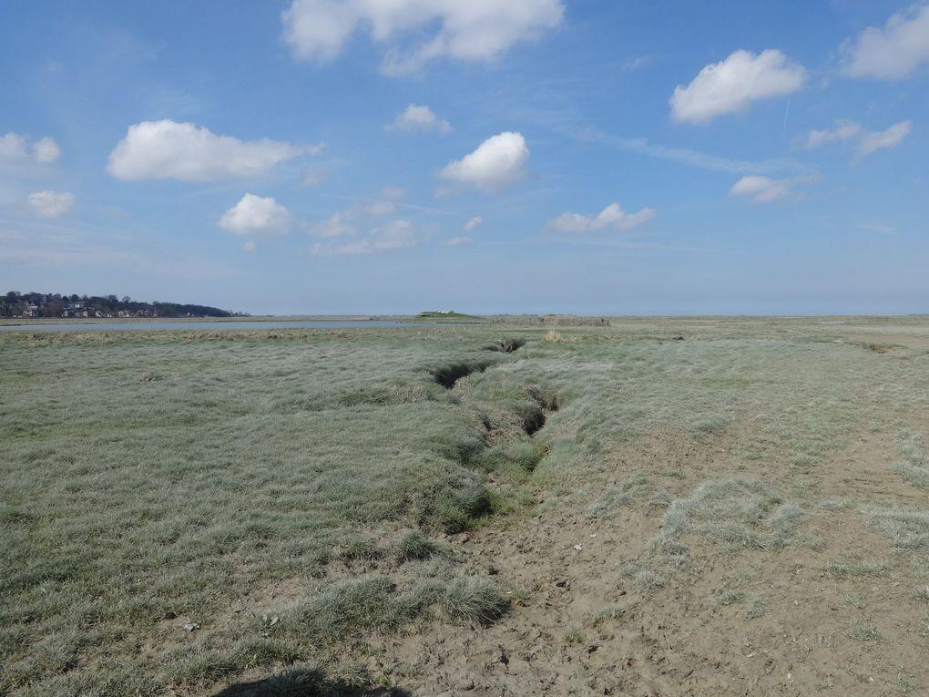 La Baie de Somme et ses environs - 7.La traversée de la Baie