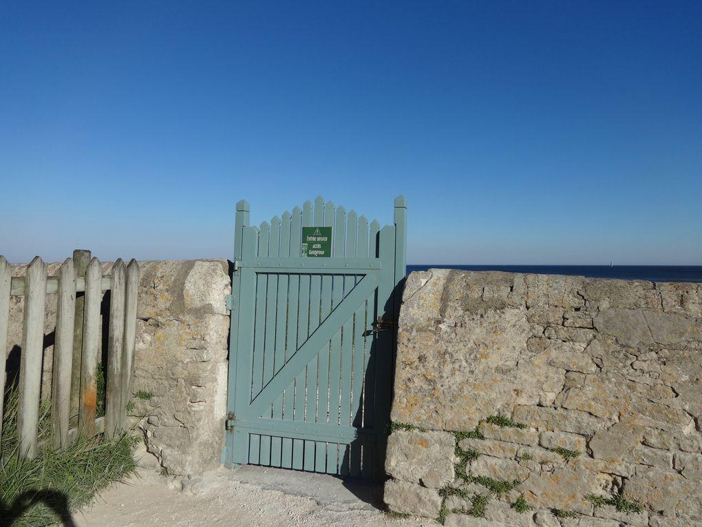 Ile de Ré - 1.a/Saint-Clément des Baleines : premières photos