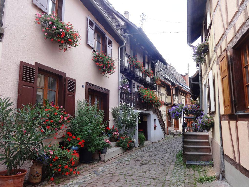 Alsace - 7.Eguisheim