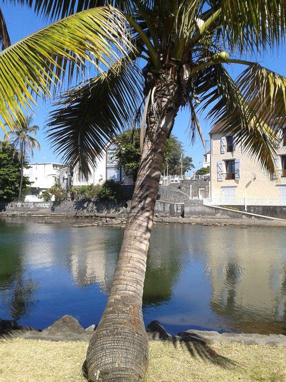 Découverte de Saint Pierre de la Réunion