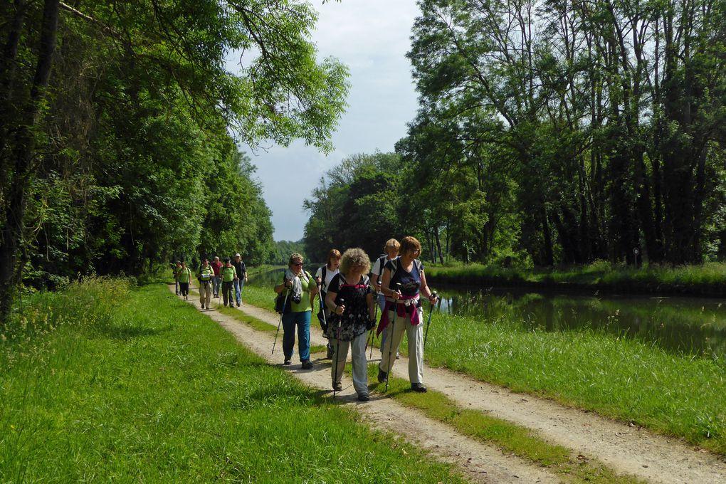 Le Loing, entre canal et rivière