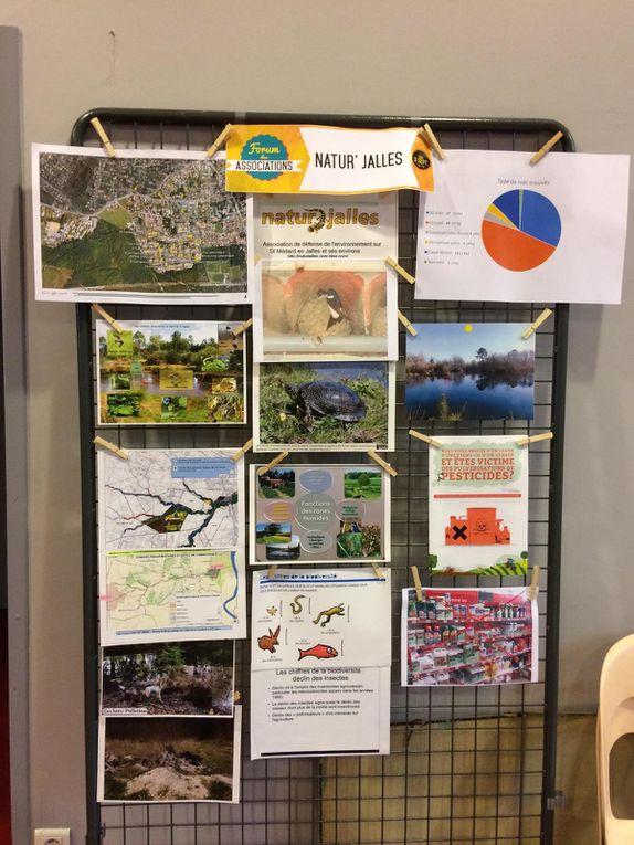 Naturjalles au forum des associations du 3 septembre 2016 à Saint Médard en Jalles