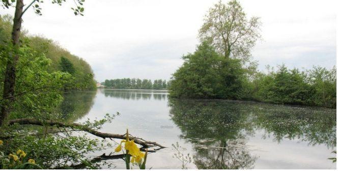"""Le Projet """"écologique"""", le site avant et aujourd'hui!"""