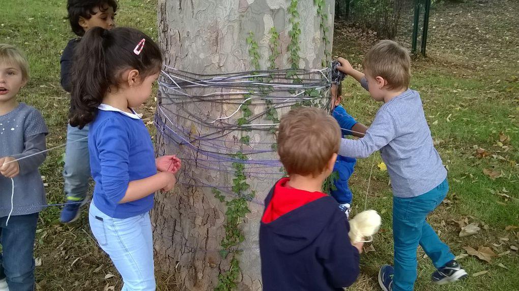 Land-Art avec les MS: laine autour d'un arbre