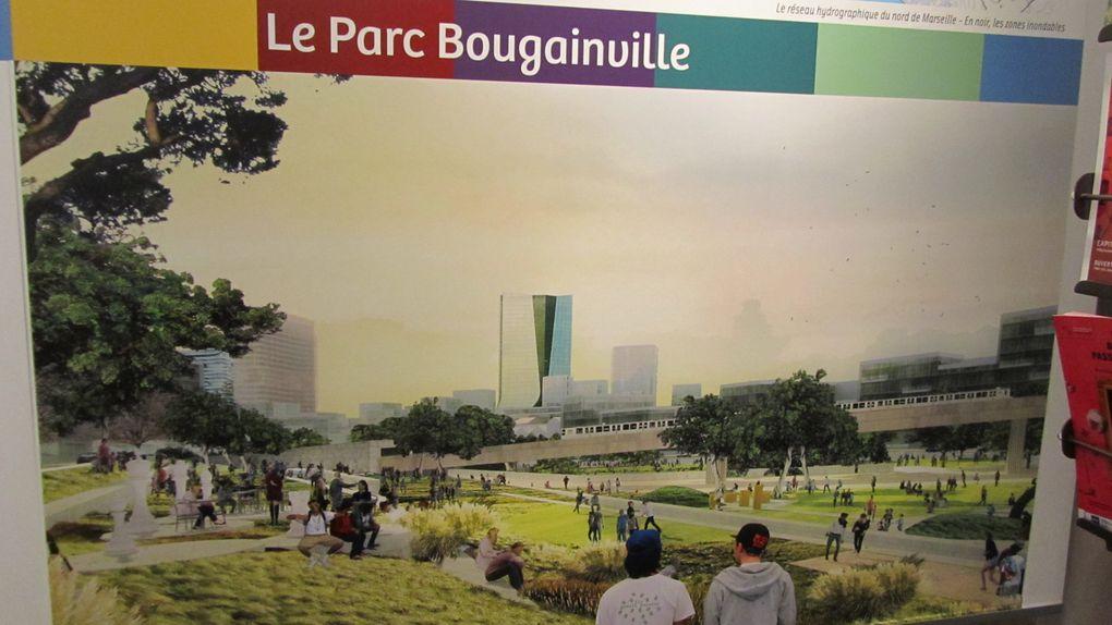 Les jardins partagés de Marseille et le nouveau projet de parc dans le cadre d'Euroméditerranée.