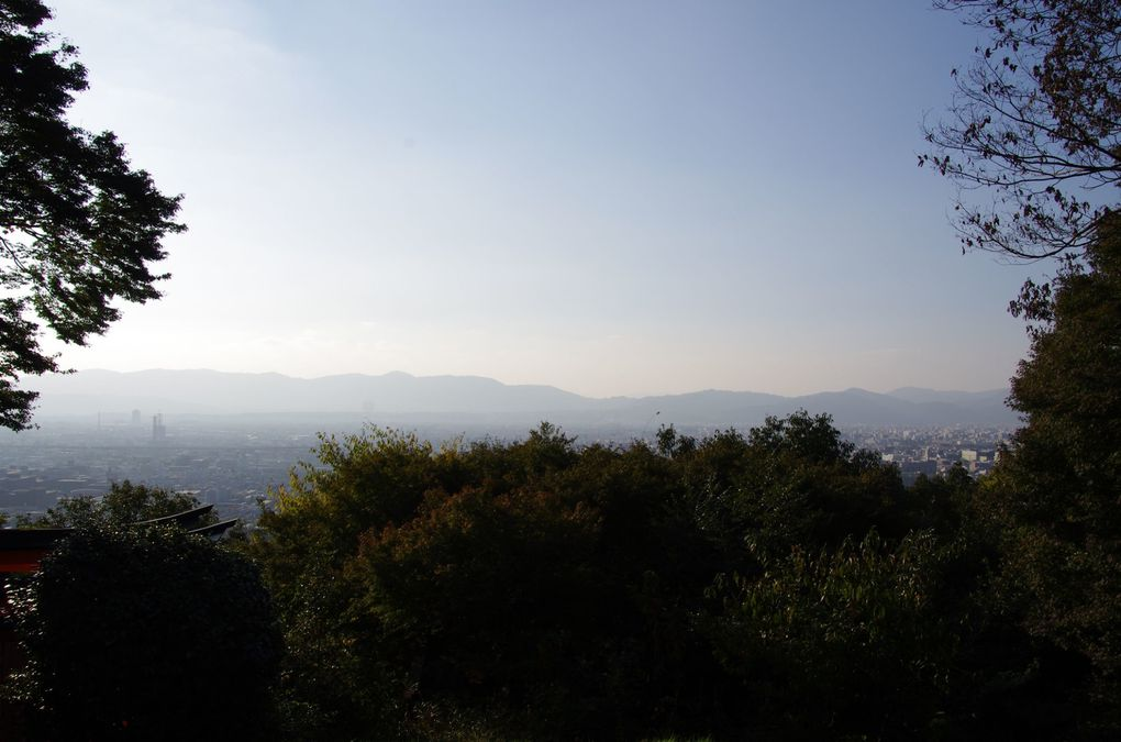 Hikone (5 novembre)
