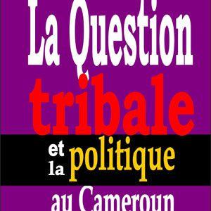 Civilisation: comment la France et la Francafrique entretiennent la &quot&#x3B;somalisation&quot&#x3B; et la &quot&#x3B;dé-civilisation en Afrique francophone?