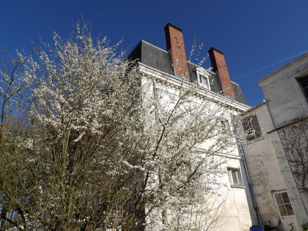 petite visite de la maison Daudet: le printemps est là!