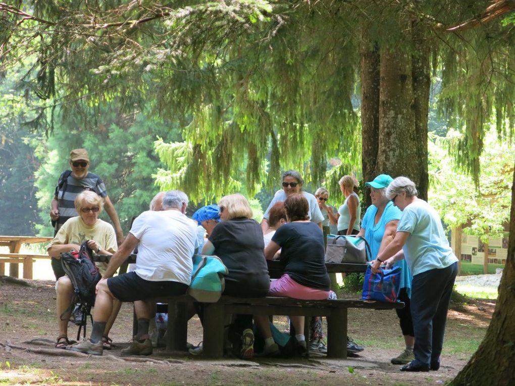 Rando en Forêt de Rothonne à Belley