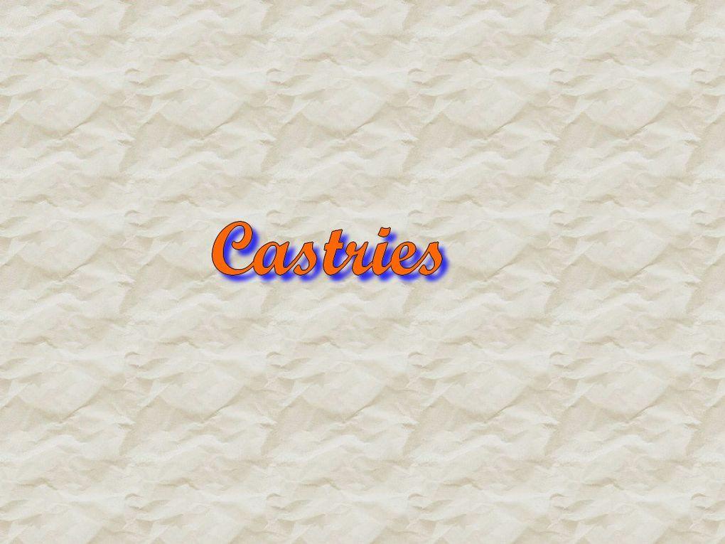 COMPTE RENDU SORTIE A CASTRIES