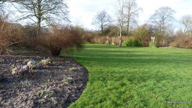 Les jardiniers n'ont pas encore coupé les tiges des graminées, chez nous , c'est fait !