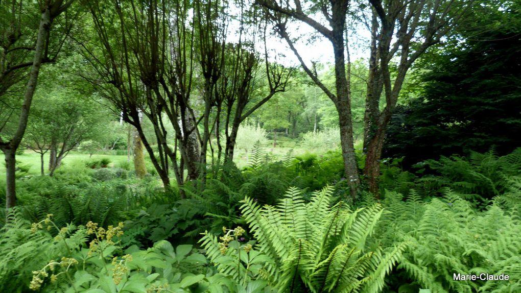 Un jardin en Creuse : Val Maubrune,