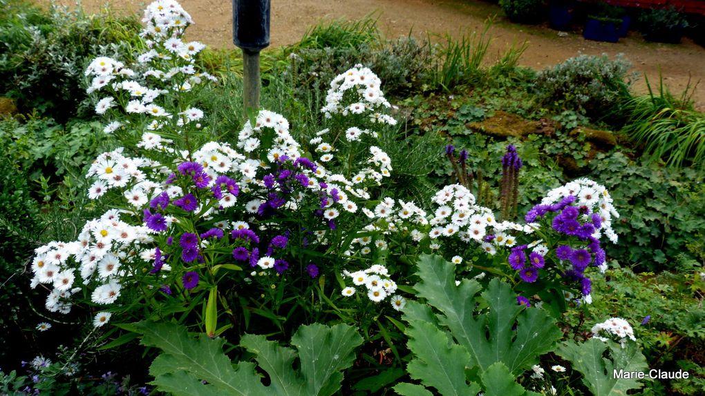 Le Jardin François,