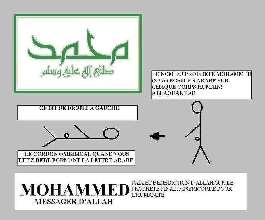 Allah et Mohammed écrits dans la Création : L'Oreille et le Corps humain !