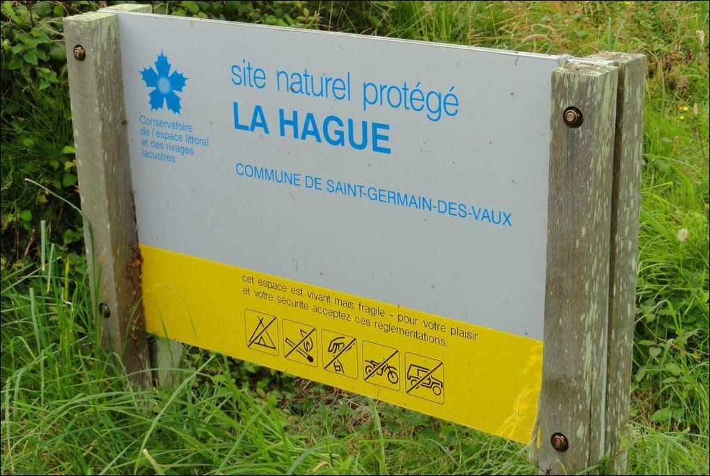 Port Racine au Nez-de-Jobourg (Manche 50) AAA