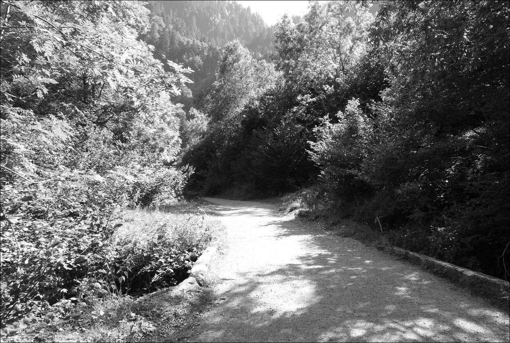 Gouffre et Rue (Ru) d'Enfer depuis la vallée du Lys Rando AA