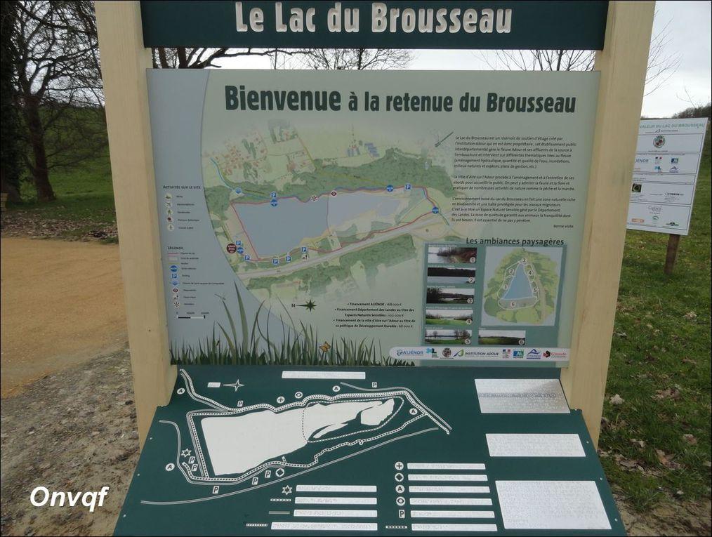 Lac du Brousseau , Aire-sur-L'Adour ( Landes 40 ) AA