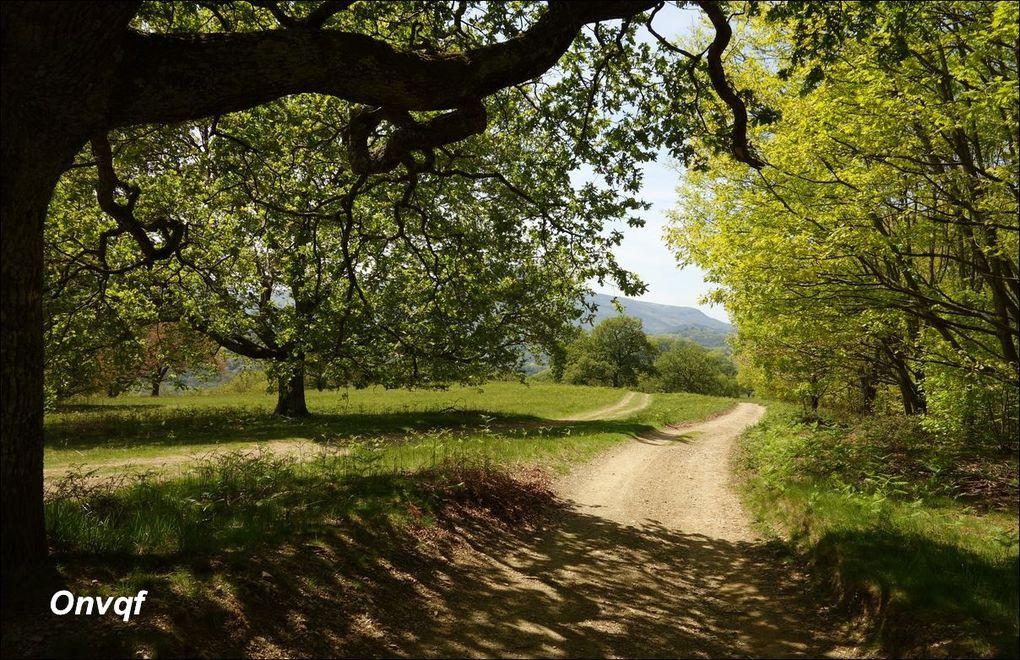 Randonnée à Saint-Pée-sur-Nivelle AA