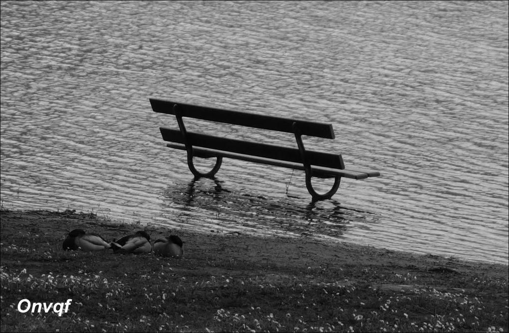 Lac Marion, Biarritz (balade) AA
