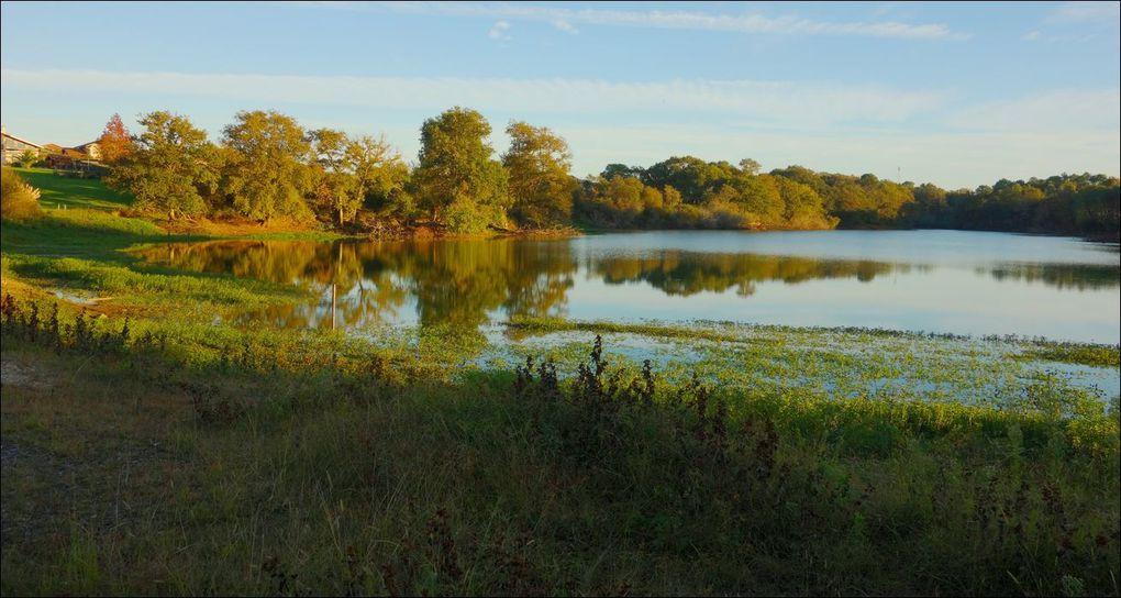 Lacs et étangs des Landes