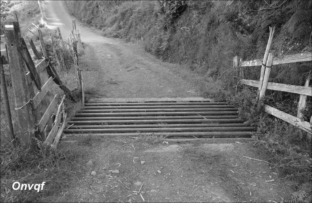 Randonnée Harriondi depuis Bidarray AA
