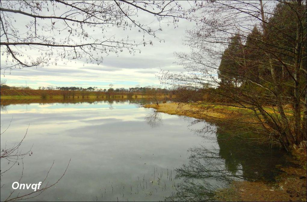 Lac d'Agès, Hagetmau (Landes 40) AA