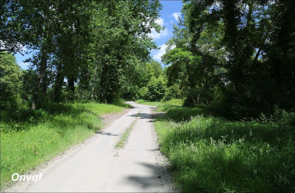 Randonnée Saint-Cricq-du-Gave AA
