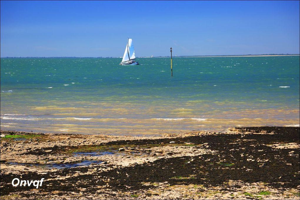 Balade à la Flotte (Charente-Maritime 17) AAA