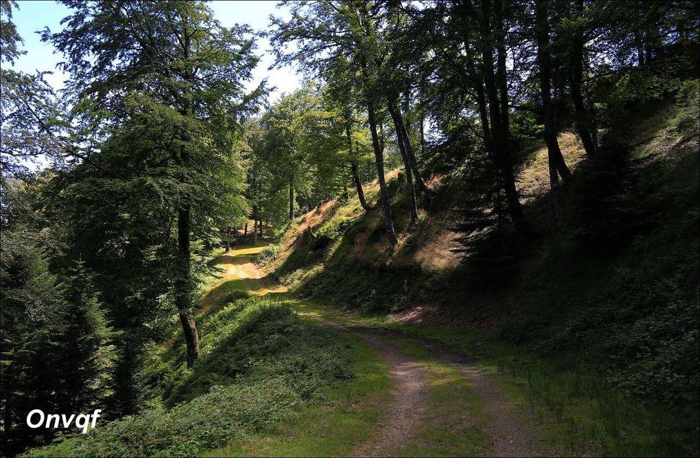 Balades, promenades et randonnées au Pays Basque, classées par dénivelé positif p1