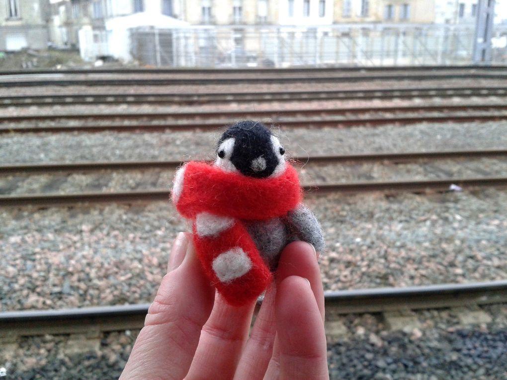 Et comme il est petit, il deviendra vite ta mascotte qui te suivra partout ! :)