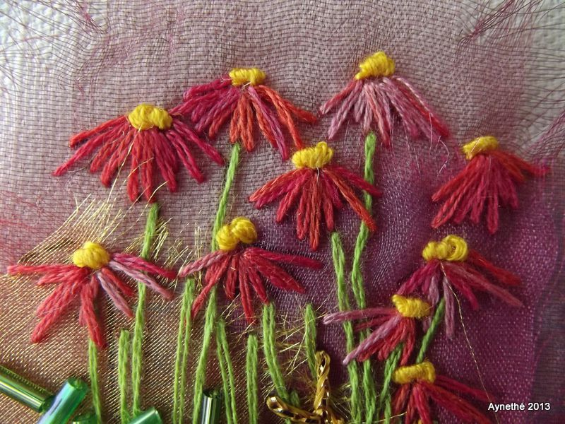 Les Echinaceas de Rowandean