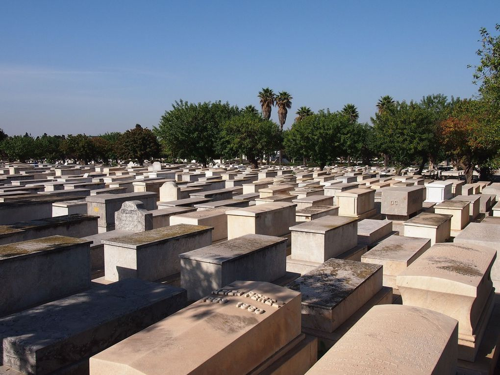 Cimetière Israélite de Ben M'sik à Casablanca. (Photos Conseil des communautés israélites du maroc)
