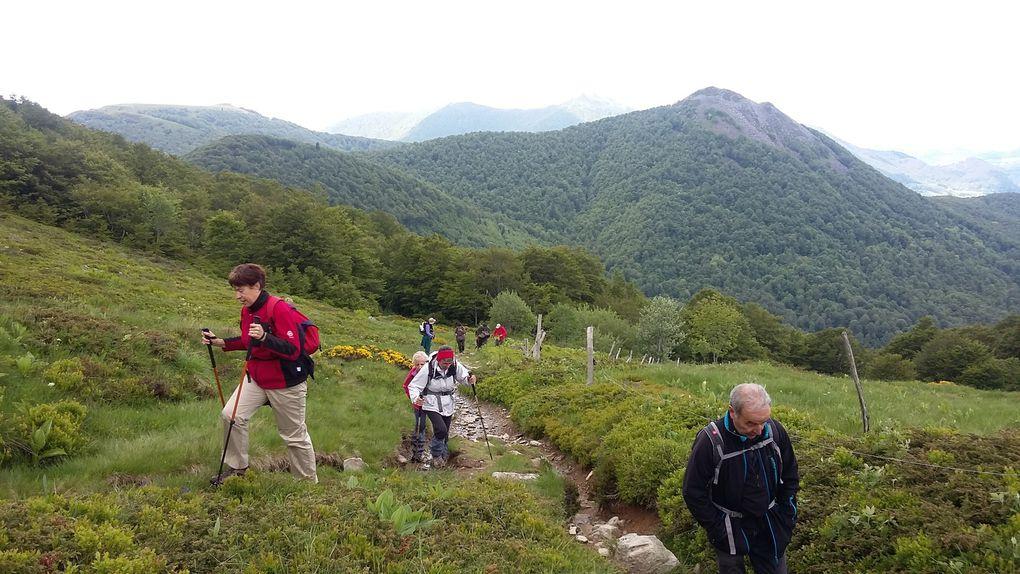 Rando&quot&#x3B;Le Puy du Griou&quot&#x3B; 19.06.16