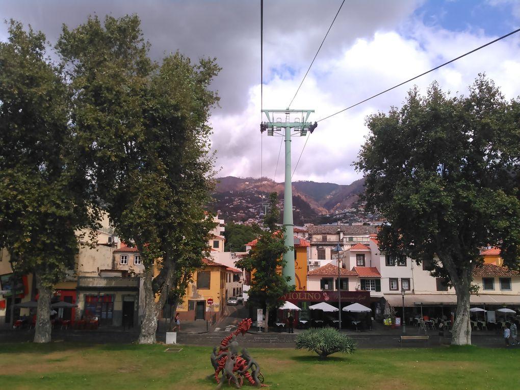 Funchal :ilha da Madeira