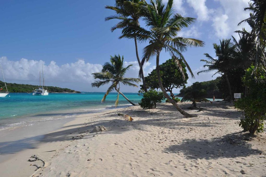 One day more : Noel aux Tobago Cays !