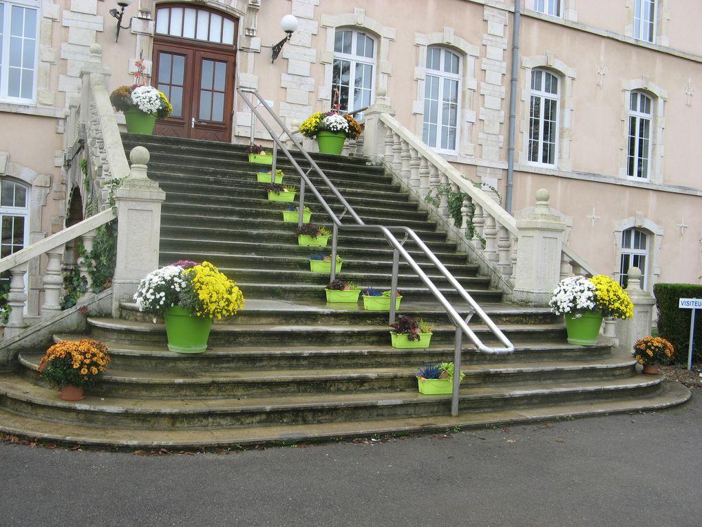 Floraison réalisée par les élèves de 4 et 3ème SEGPA