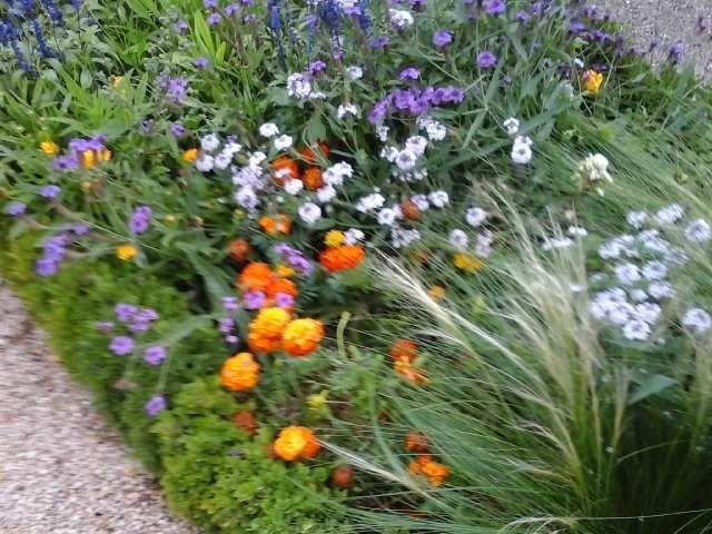 Les jardins de la rencontre