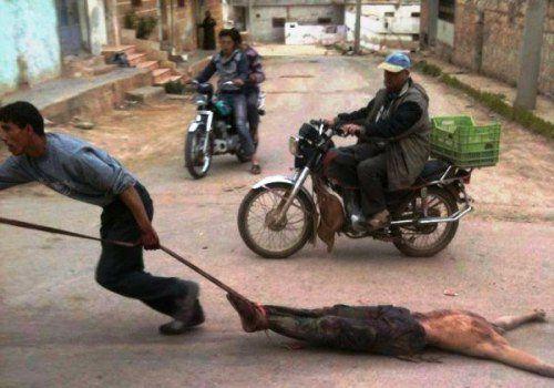 La barbarie: l'honneur du bon Musulman!