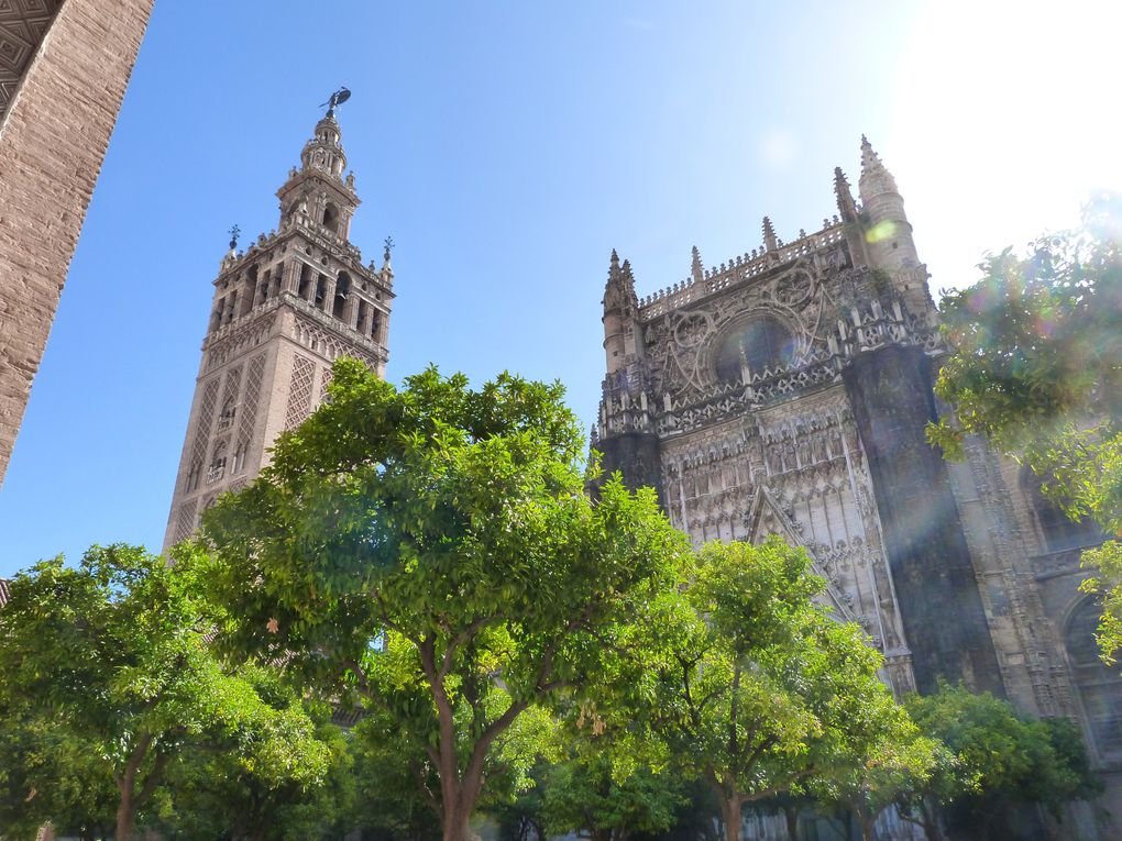 La cathédrale de Séville et sa Giralda, vues en long, en large et en travers !