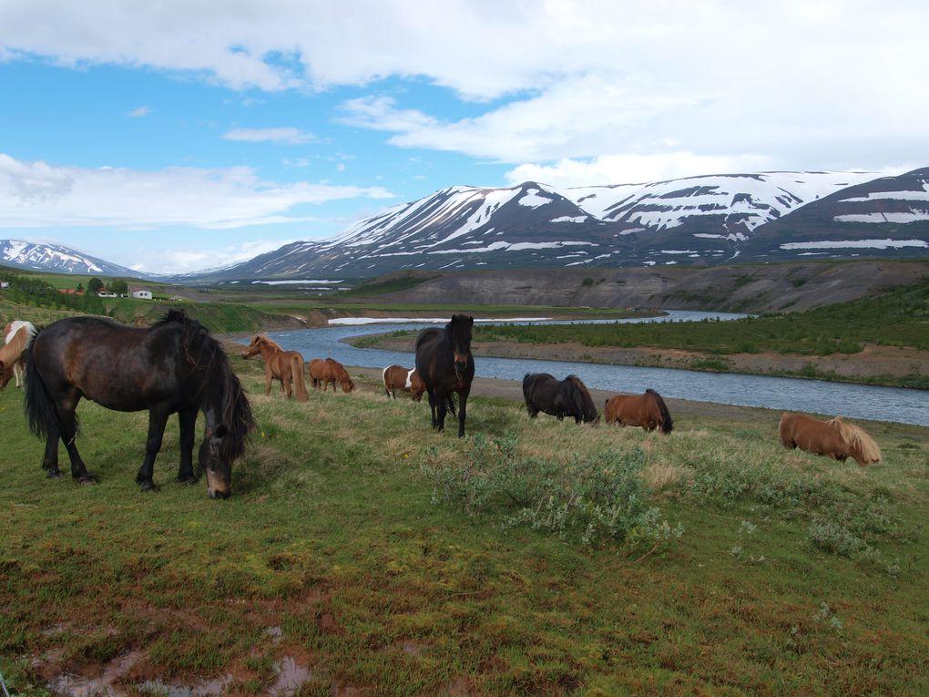 14eme jour : Godafoss - Akureyri