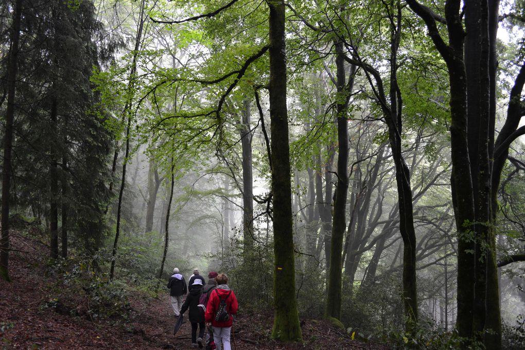 L Boulaye, Beaune, Autun, St Honoré les Bains, Bibracte le Mont Beuvray, le dernier sabotier du Morvan, Guédelon, le saut du Goulou