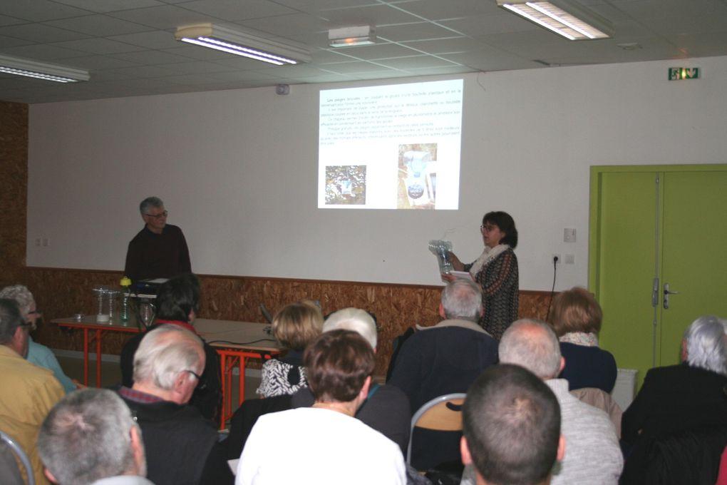 Conférence sur le frelon asiatique, 18 mars 2017 à Langeac